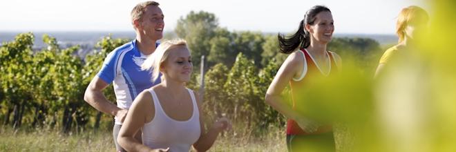 Läufer in den Weinbergen von Bad Schönborn