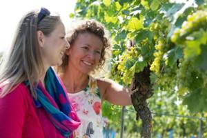 Zwei Frauen bewundern die herbstlichen Weinreben