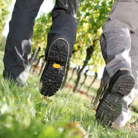 Schuhe von zwei Wanderern in den Weinbergen