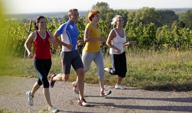 Vier gut gelaunte Läufer in den Weinbergen rund um Bad Schönborn Langenbrücken