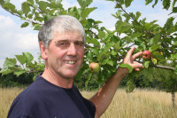 Erwin Holzer, Vorsitzender des AHNU Bad Schönborn, erklärt eine alte Apfelsorte im OGG