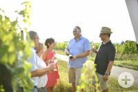 Weinverkostung in den Weinbergen um Bad Schönborn