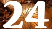 Zahl 24
