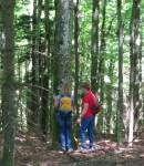 Zwei Menschen stehen an einem Baum