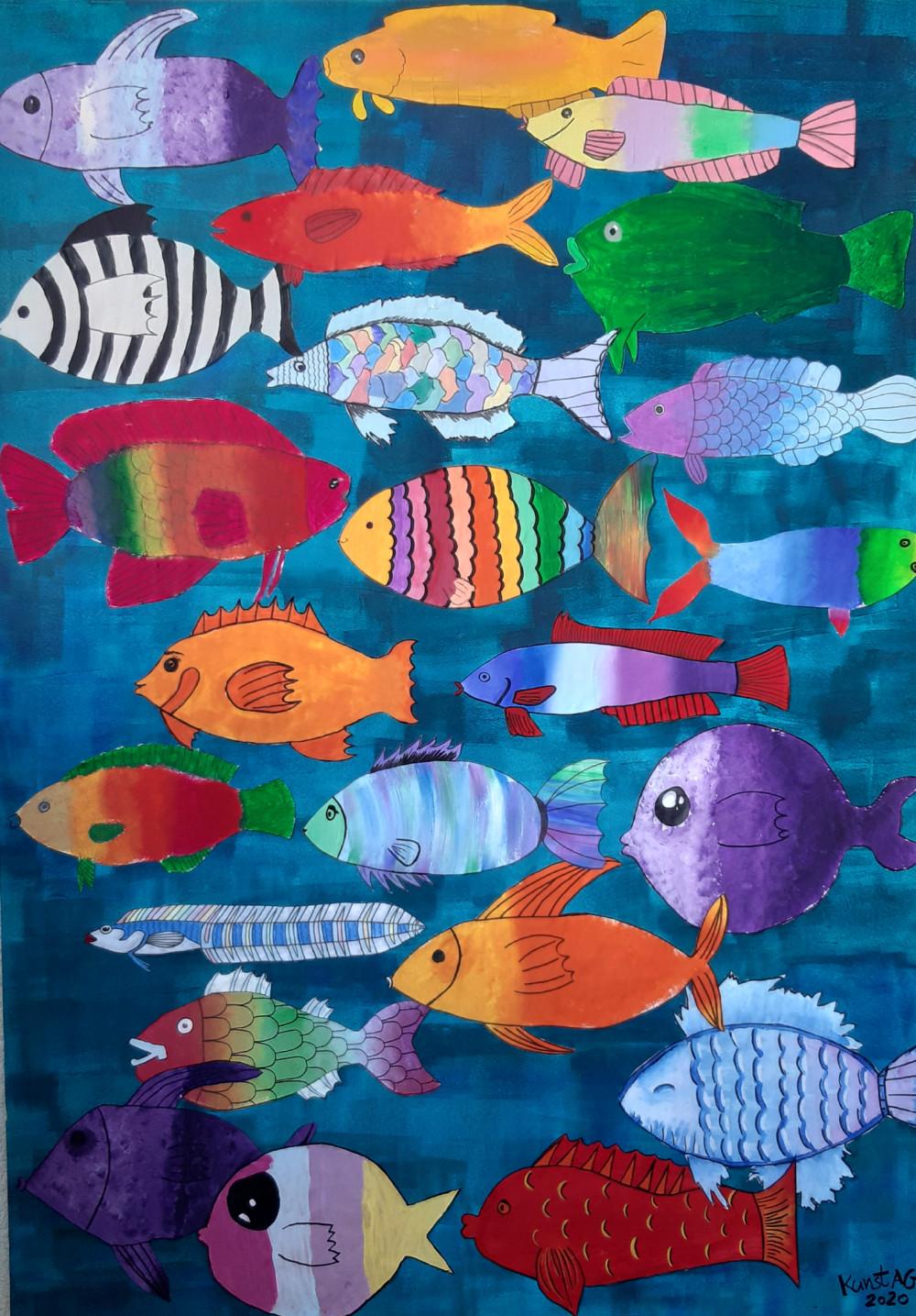viele bunte Fische im Wasser