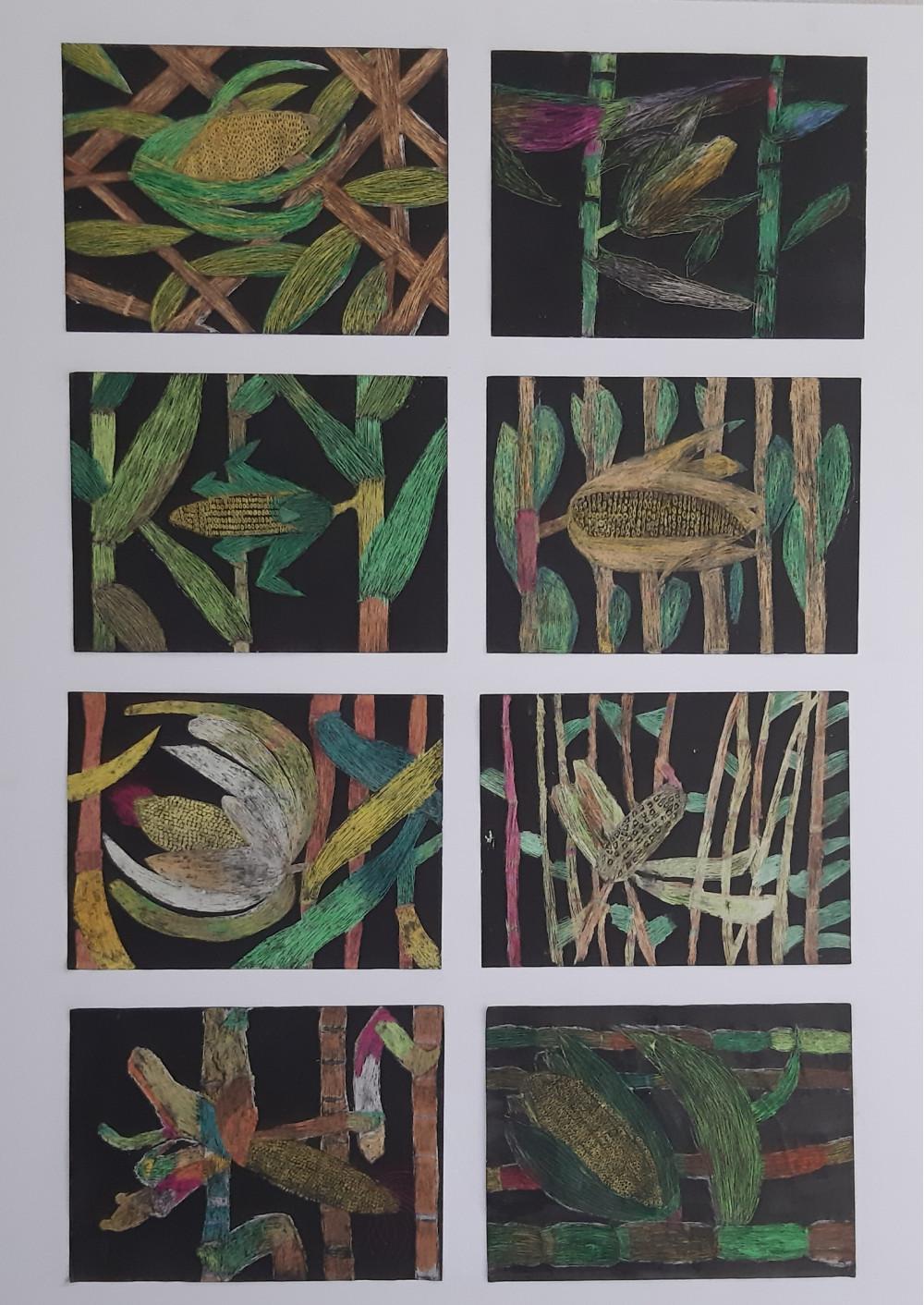 8 Bilder zum Thema Mais auf schwarzem Hintergrund