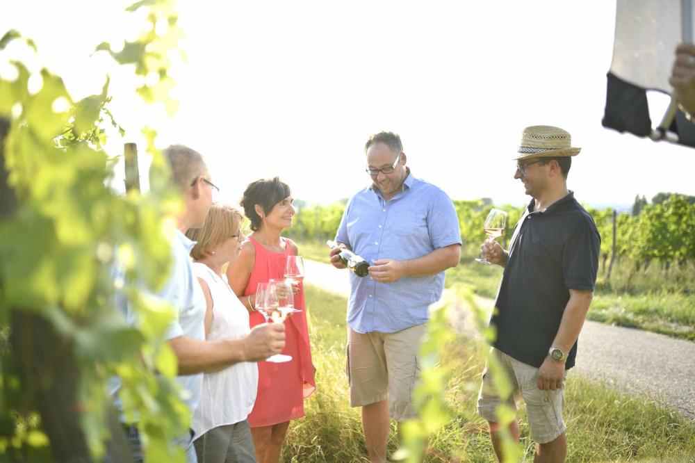 Fünf Personen gut gelaunt bei einer Weinverkostung in den Weinbergen