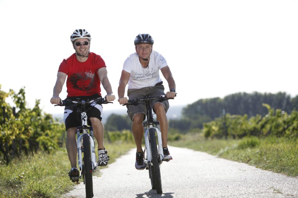 2 Männer fahren Fahrrad. Im Hintergrund sind Weinreben zu erkennen